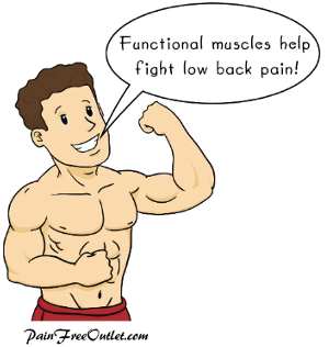 Muscles Can Help With Low Back Pain